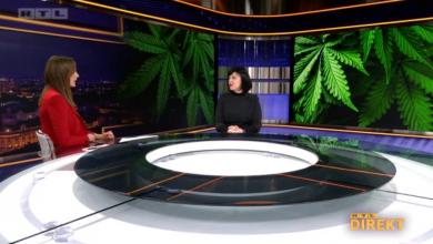 Photo of VIDEO Stiže Lex cannabis, zakon koji predviđa potpunu legalizaciju konoplje