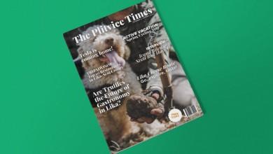 Photo of NOVI THE PLITVICE TIMES Više od 100.000 pregleda u samo 10 dana!
