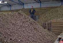 """Photo of VIDEO Tone krumpira propadaju, a mi kupujemo egipatski, francuski… Proizvođači ogorčeni: """"Svaka ta kila viška je direktni šamar"""""""