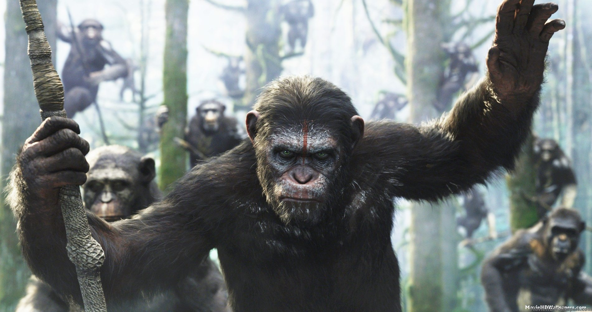 "Photo of Tamarina RECENZIJA filma ""DAWN OF THE PLANET OF THE APES"" (2014.)"