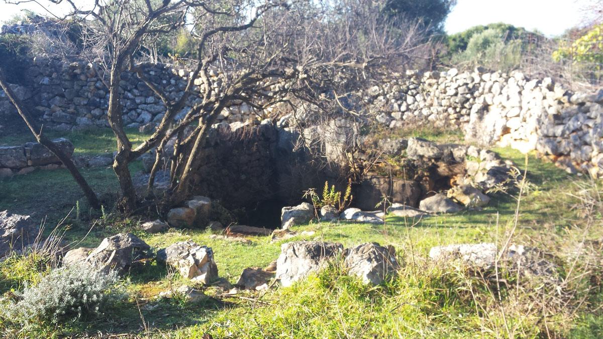 Photo of Vrtovi Lunjskih Maslina: radovi na suhozidu i putevima