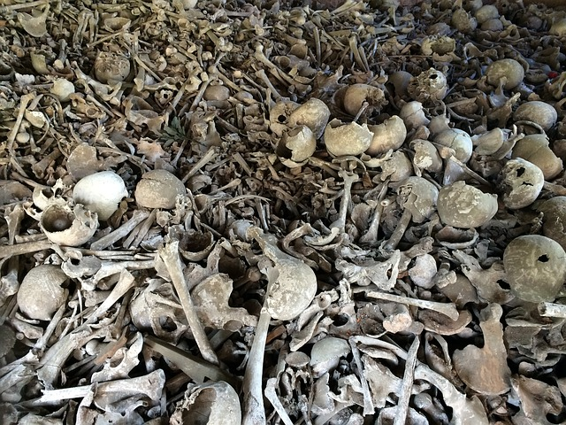 Photo of Vrhovine – ŠPILJA BEZDANJAČA:  Tragična smrt u špiljskoj grobnici