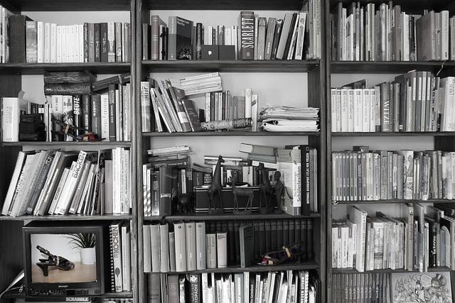 Photo of Budućnost knjige nije samo digitalizacija
