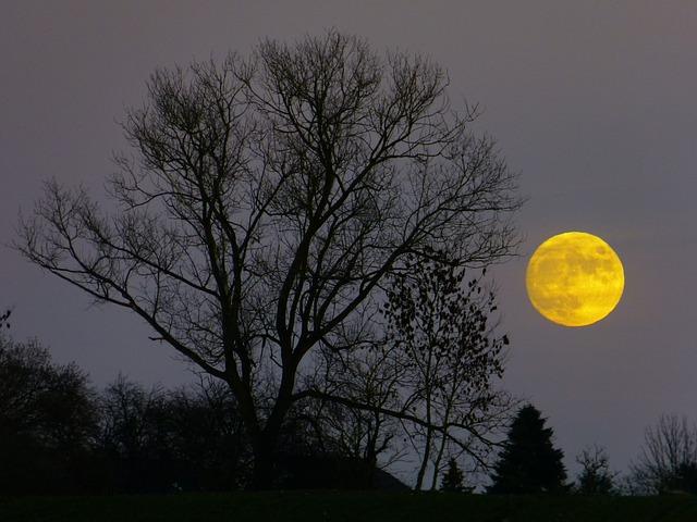 Photo of Koliko zapravo mjesečeve mijene utječu na ljude