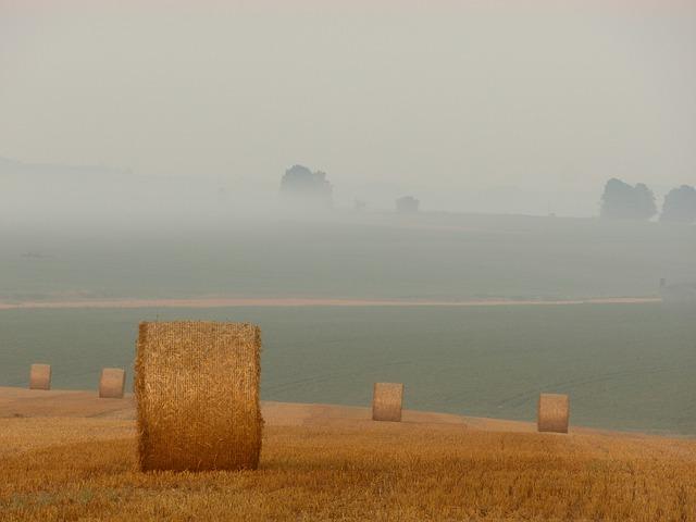 Photo of Priče iz ličkog kraja: Život na selu nekad i danas