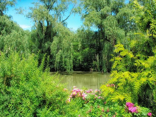 Photo of TripAdvisor dodijelio je Botaničkom vrtu certifikat izvrsnosti za 2015. godinu