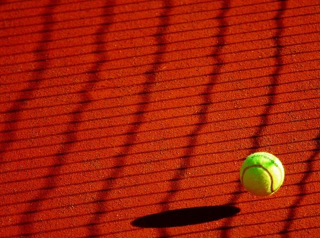 Photo of Velika Britanija plasirala se u u polufinale Davis Cupa