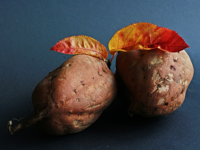 Photo of 5 sezonskih namirnica za jesen