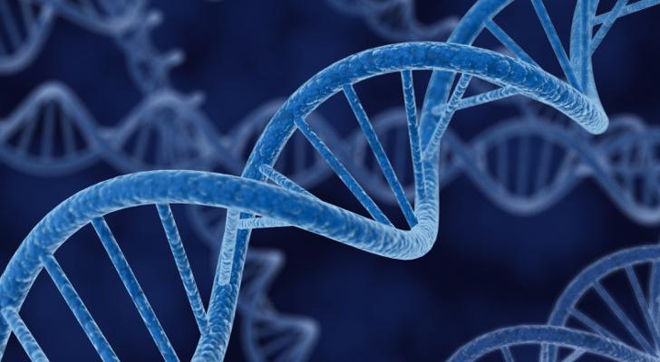 Photo of Otkriveni geni čije brisanje produžava život 60 posto