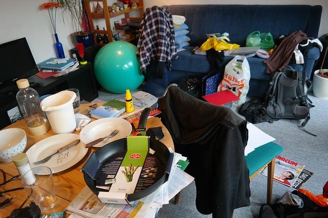 Photo of Savjeti za osvježenje studentskog stana (kad nemate mnogo vremena, a očekujete posjetitelje)