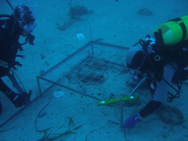 Photo of Senzacija u Zadru: u moru nađeni ostaci naselja starog 3500 godina