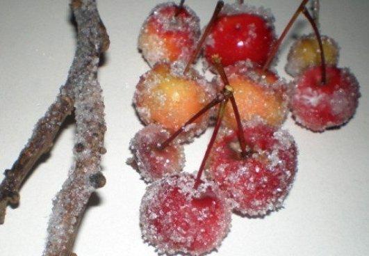 "Photo of Za božićni ugođaj: Napravite sami ""ledene ukrase"""