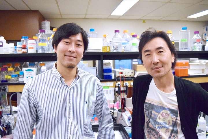 """Photo of Znanstvenici otkrili kako """"isključiti"""" protein koji uzrokuje rak"""