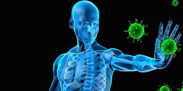 Photo of Namirnice za jačanje imuniteta zimi