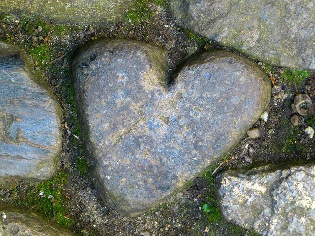 Photo of Prirodne ljepote u obliku srca