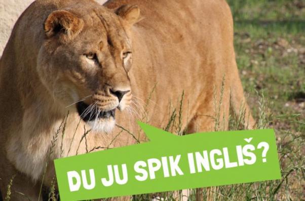 Photo of U zagrebačkom Zoološkom vrtu se organiziraju besplatne radionice za djecu na engleskom jeziku