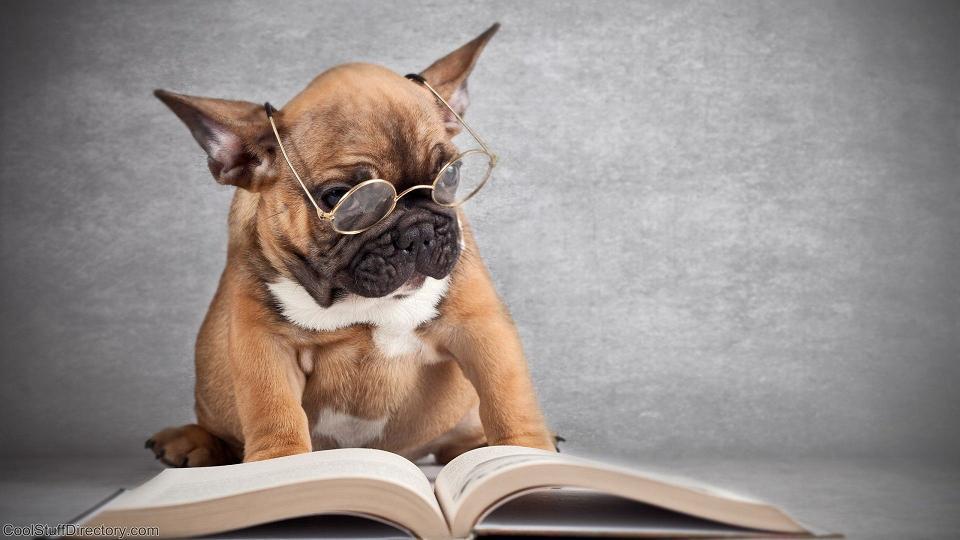 Photo of Što čitanje velikih djela čini za nas?