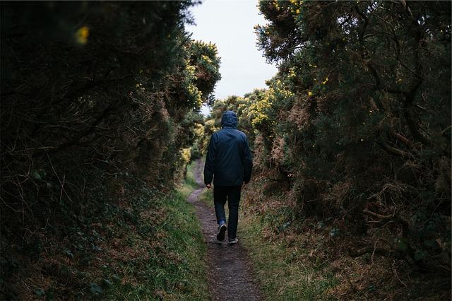 Photo of Uz jedan trik hodanjem možete izgubiti i 20 posto više kalorija nego inače