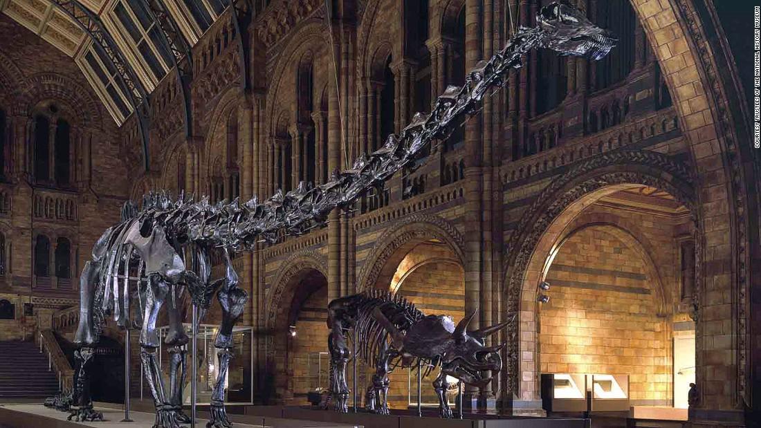 Photo of Pad dinosaura počeo prije udara asteroida