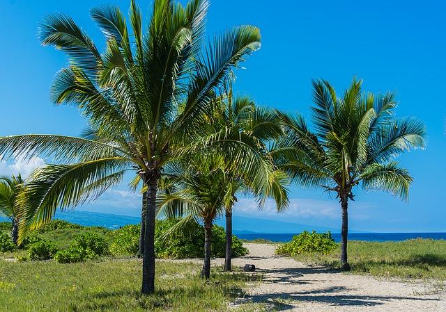 Photo of Najopasnije plaže na svijetu