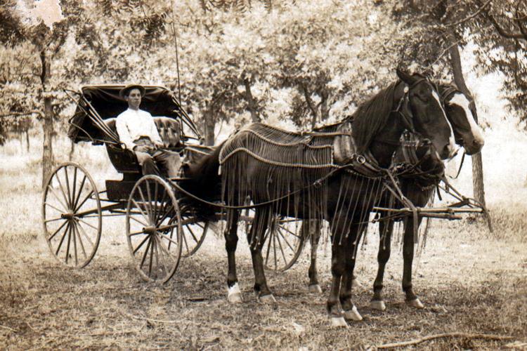 Photo of Nekad konji i kočije danas automobili