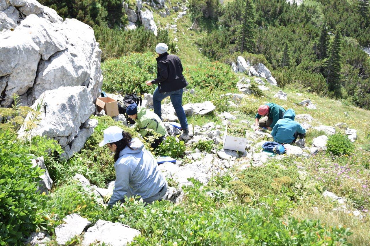 Photo of U NP Sjeverni Velebit uspješno završen ovogodišnji volonterski program