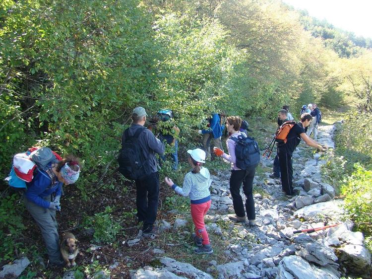 Photo of Volonteri uređivali poučnu stazu Terezijanu