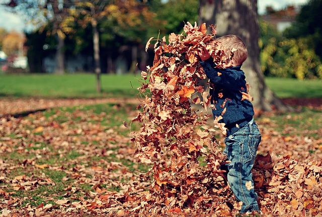 Photo of Sreća je u malim stvarima: 5 razloga zašto volimo jesen