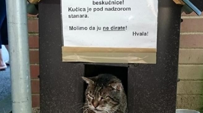 Photo of Kućica za mačke lutalice u Zagrebu