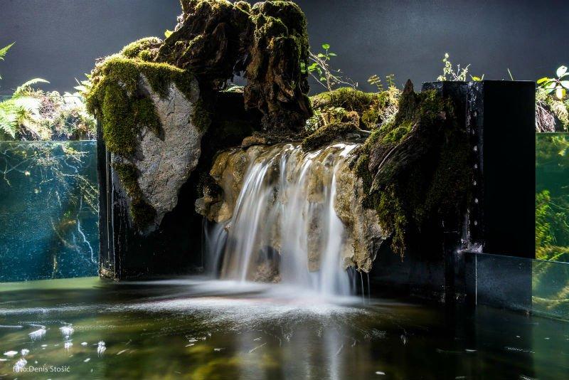 Photo of Hrvatska bogatija za jedan projekt: Otvoren najveći slatkovodni akvarij u ovom dijelu Europe