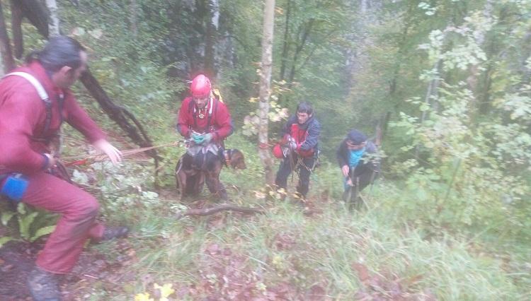 Photo of Članovi HGSS stanice Gospić iz jame spasili tri psa