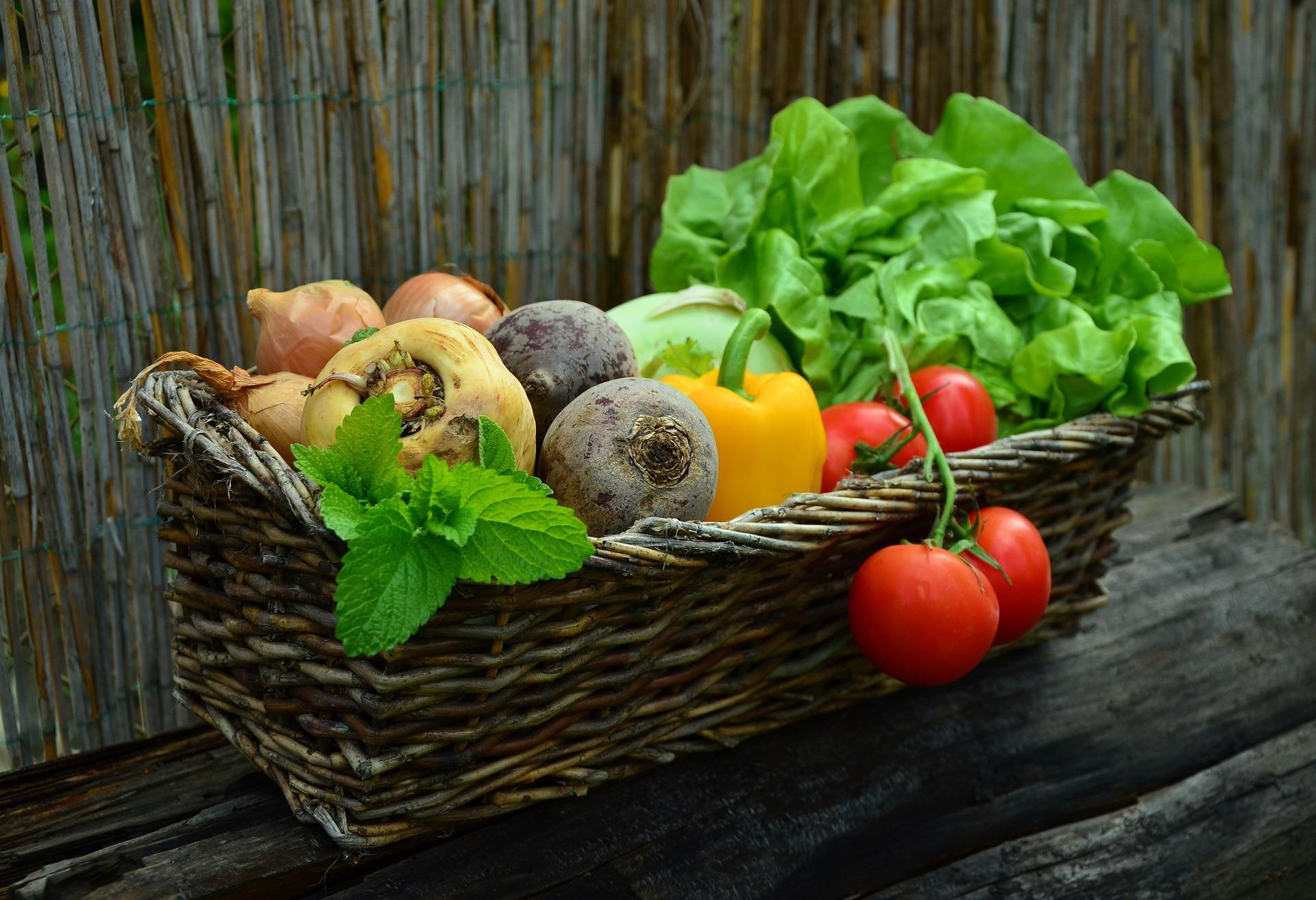 Photo of Kako birati plodove pri kupnji voća i povrća
