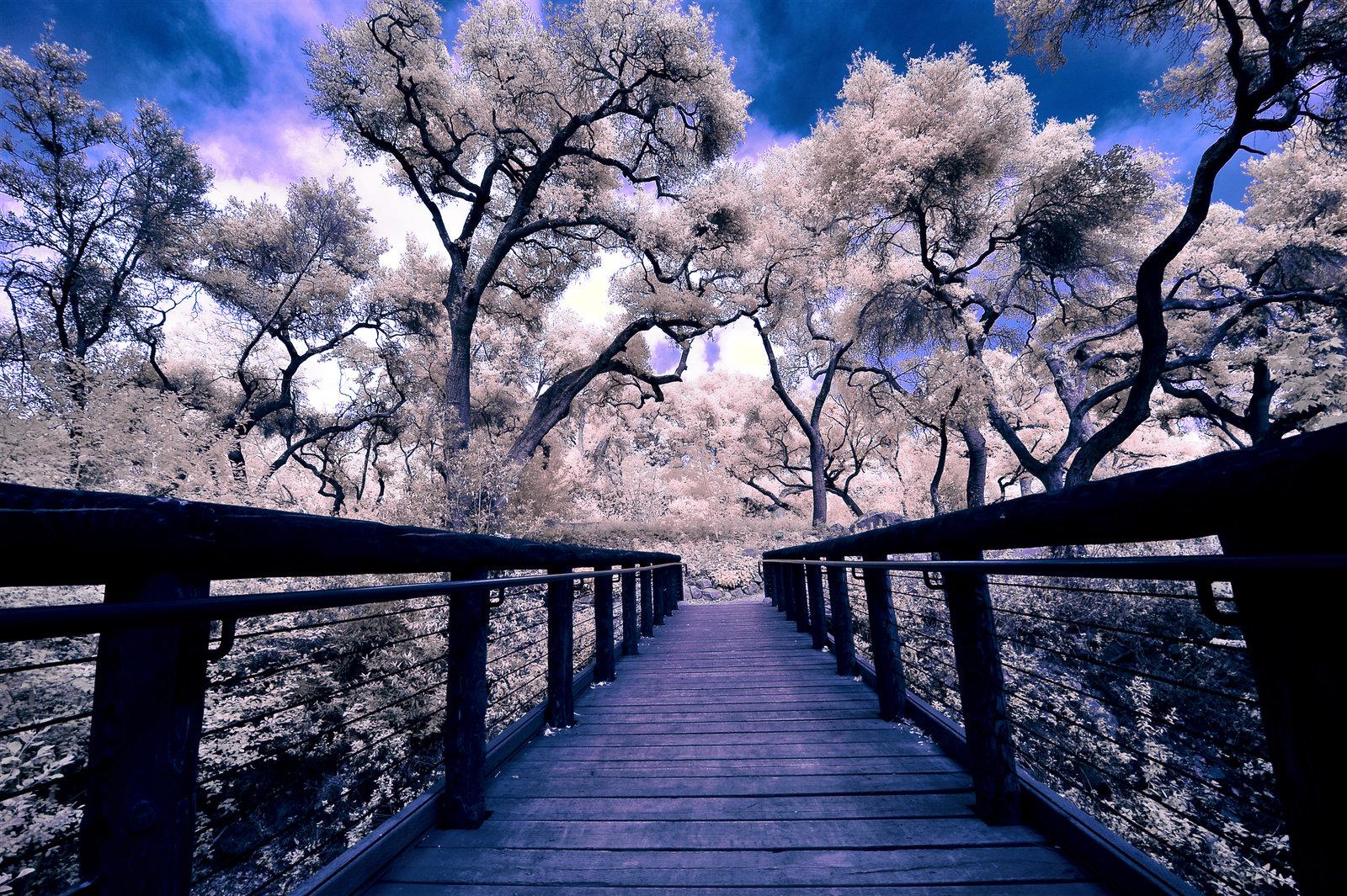 Photo of Mostovi – Što se krije s druge strane?