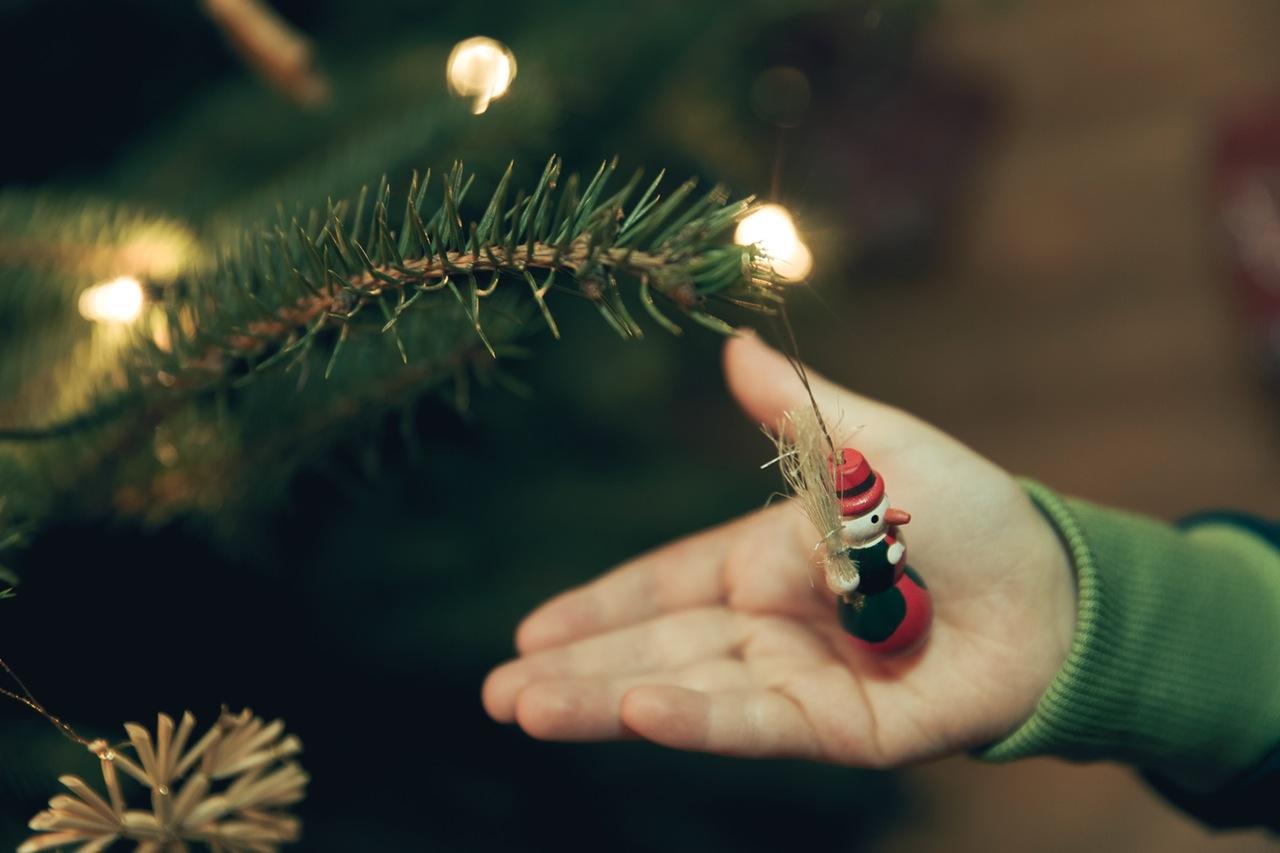 Photo of Kamo s božićnim drvcem nakon blagdana?