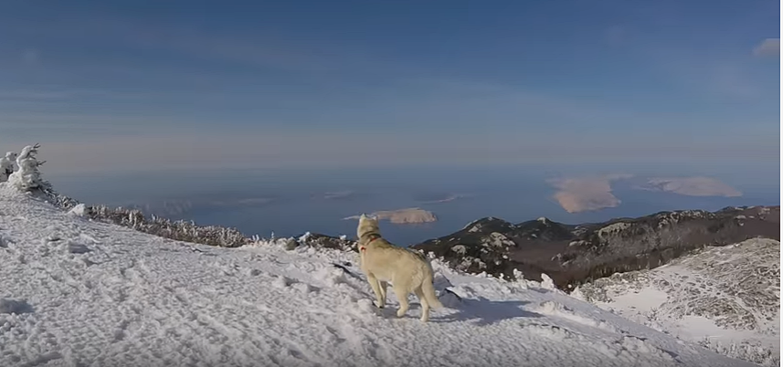Photo of VIDEO: Prošetajte bajkovitim Velebitom!