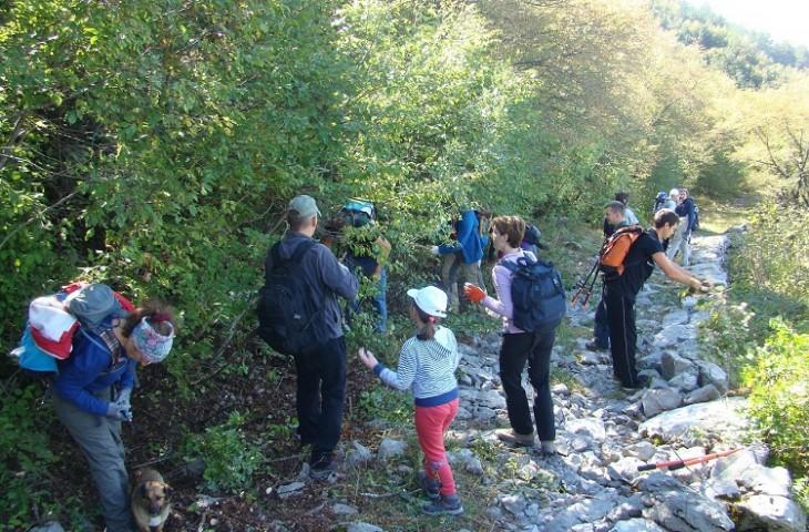 Photo of U subotu volonterska akcija čišćenja poučne staze Terezijane