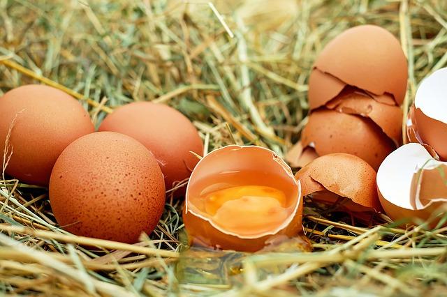 Photo of Za što sve možemo iskoristiti ljusku od jajeta?
