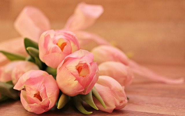 Photo of Dobar razlog zašto bi u svom domu trebali imati cvijeće