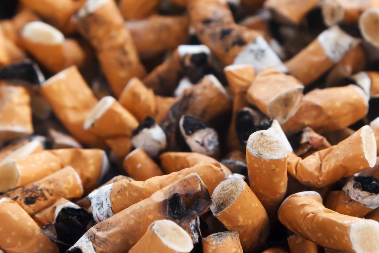 Photo of SVJETSKI DAN NEPUŠENJA Duhan je štetan za zdravlje i okoliš