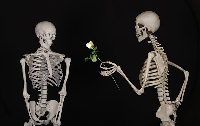 Photo of Ljubav nije briga za tvoje kile viška