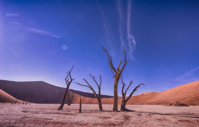 Photo of Znanstvenici objavili razlog iznimno visokih temperatura u lipnju