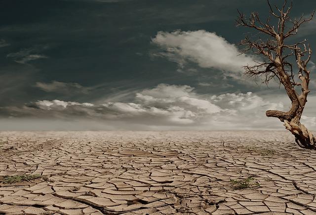 Photo of Stručnjaci upozoravaju: Klimatske promjene donose crni scenarij