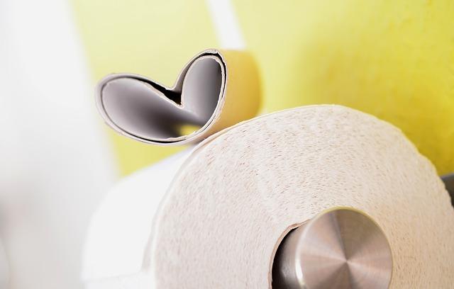 Photo of Zanimljivosti o WC papiru koje sigurno niste znali