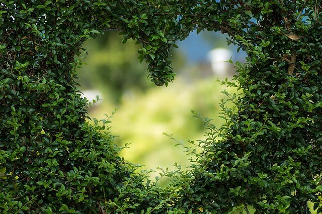 Photo of Zakoni ljubavi koje je nemoguće izbjeći