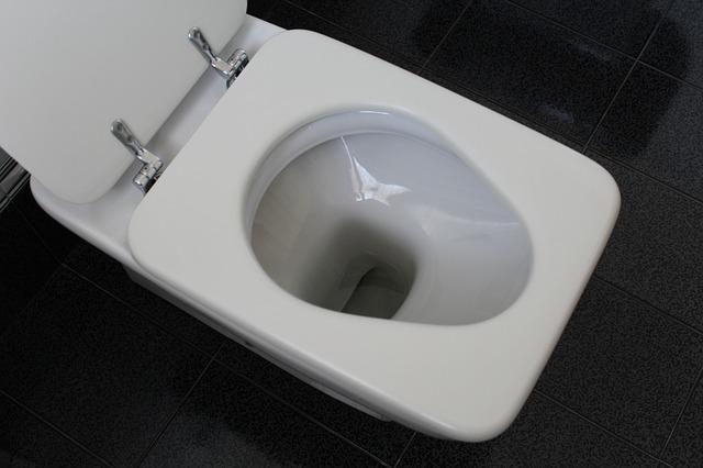 Photo of WC školjka:  Koliko je često zaista morate čistiti?