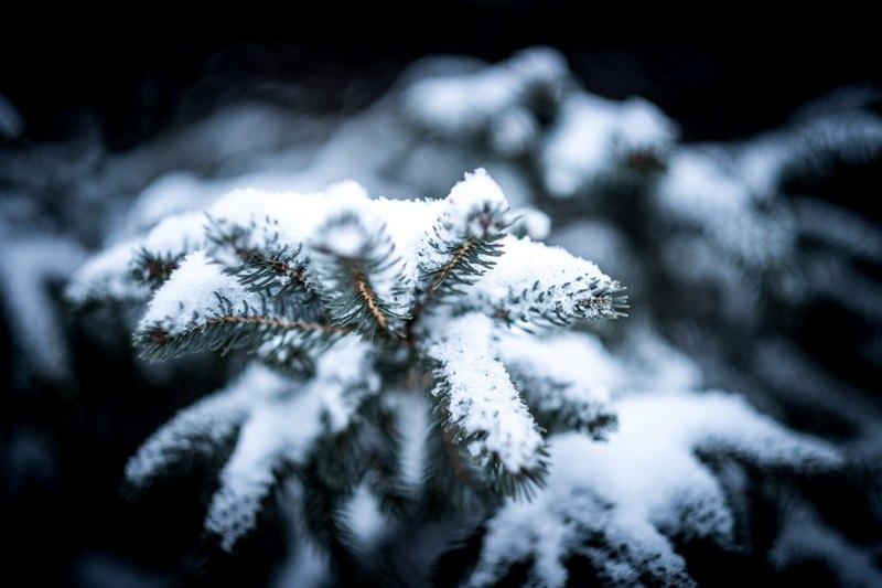 Photo of Vremenska prognoza: Krajem tjedna stiže snijeg!