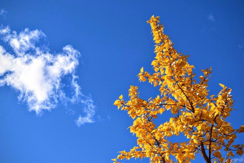 Photo of Vremenska prognoza: Do kad će trajati lijepo vrijeme?