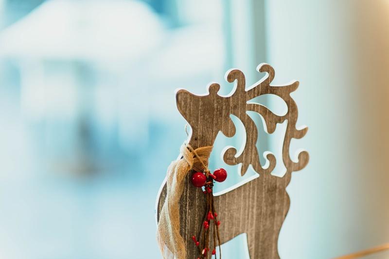 Photo of Prava istina o sobovima Djeda Mraza