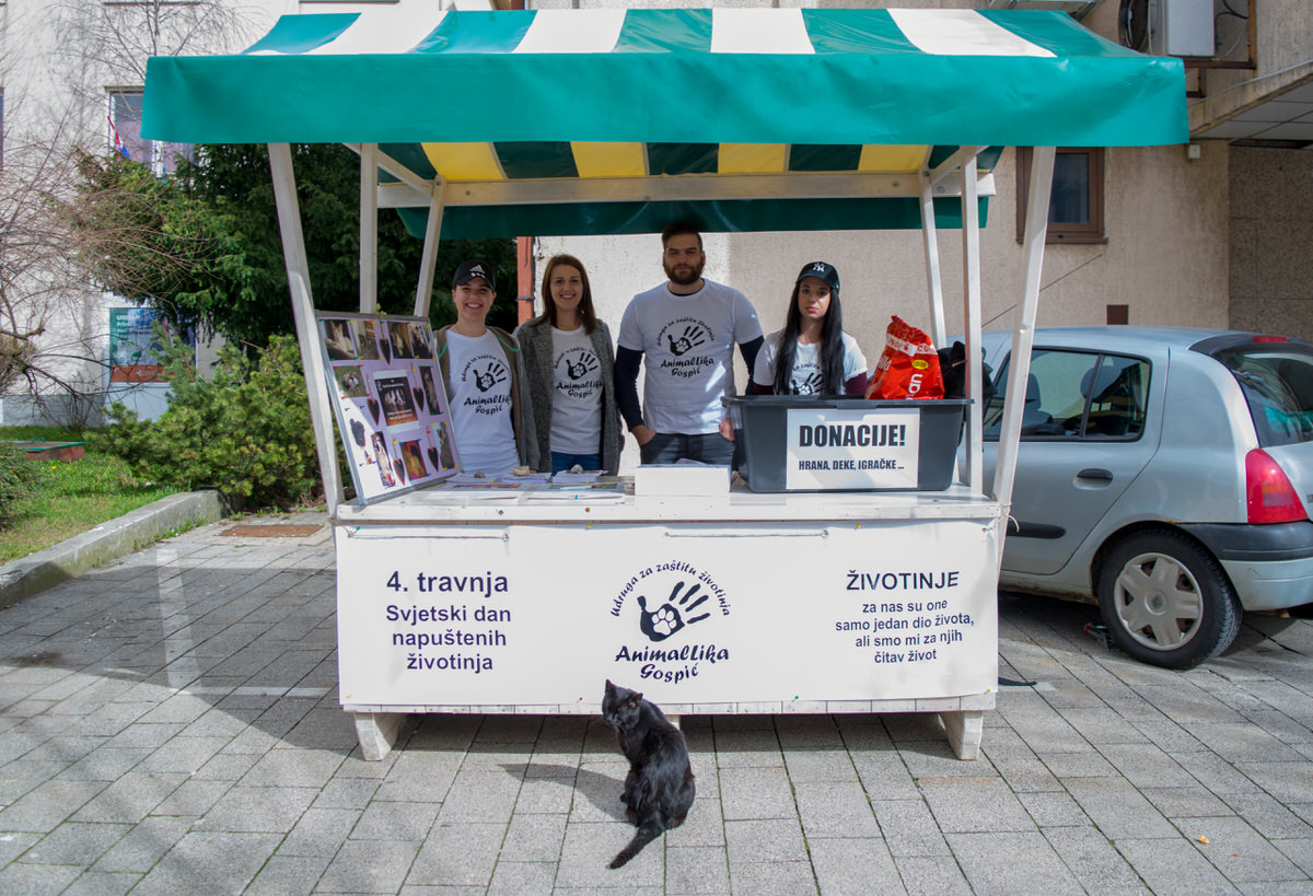 Photo of FOTO Udruga AnimalLika obilježila Svjetski dan napuštenih životinja