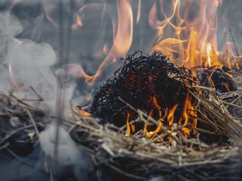 Photo of Vatrogasci upozoravaju: Budite oprezni prilikom spaljivanja biljnog otpada!